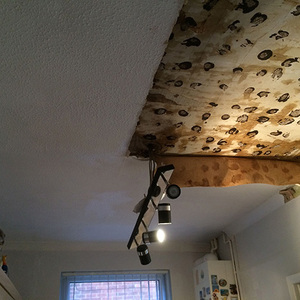 Ceiling-showing-water-damage-2